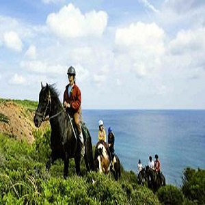 Equestrian Tourism Training